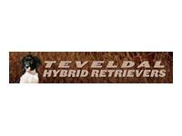 Hybrid Retrievers