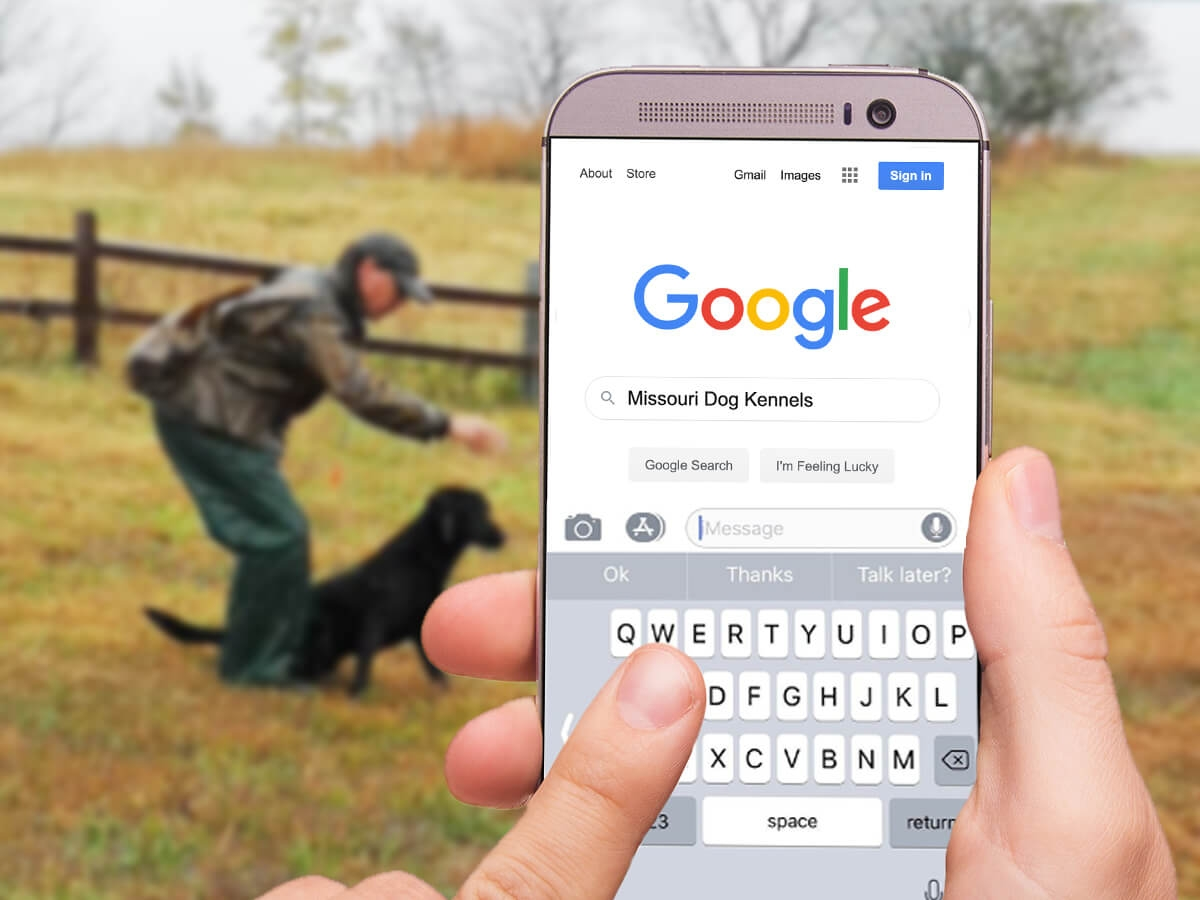 SEO for Gun Dog Breeders