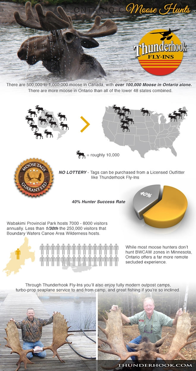Hunting Infographic