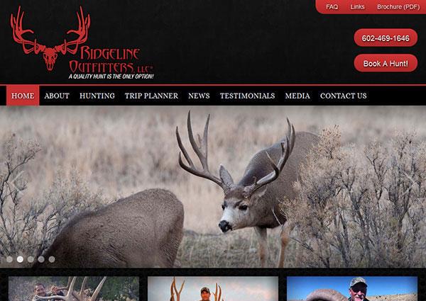 big game elk hunting web design. Black Bedroom Furniture Sets. Home Design Ideas