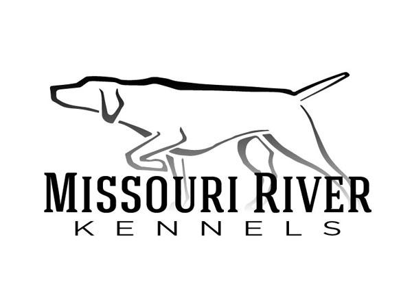 Dog Kennel Web Design Gun Dog Trainer Website Design