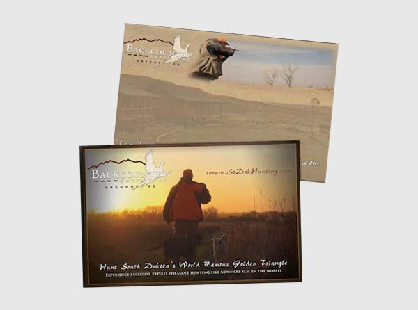 Pheasant Hunting Postcards