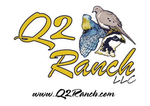 Custom Quail Hunting Logo Design