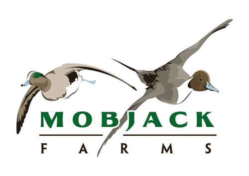 Mobjack Farms